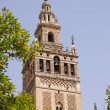 GiraldTower in Seville — Stockfoto #8004723