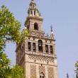 GiraldTower in Seville — Foto Stock #8004723