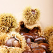 Sweet chestnuts — Foto de Stock