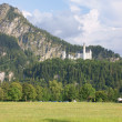 Neuschwanstein castle — Stock Photo #9022633