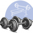 Stock Vector: Dumbbells