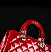 Woman handbag , fashion photo — Stock Photo