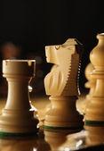 Chess horse — Stock Photo