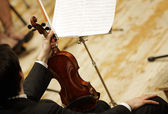 Violinists during a classical concert music — Stock Photo