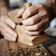 Hands of a craftsman — Stock Photo #8739021