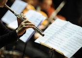 žena hraje flétna — Stock fotografie