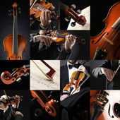 The violinist collage: Musician playing violin — Stock Photo