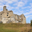 Mirów castle - Foto Stock