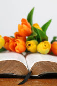 Bible and tulips — Stock Photo