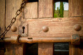 Ancient wooden door — Stockfoto