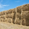Stock Photo: Wall of Hay