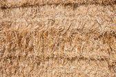 Wall of hay — Stock Photo