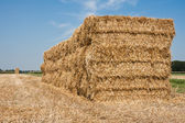 Haystack in the Netherlands — Stockfoto