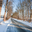 Slippery road in frozen Dutch farmland — Stock Photo