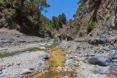 Caldera de Taburiente, valley at La Palma, Canary Islands — Stock Photo