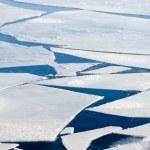 büyük buz kütleleri ile dondurulmuş deniz — Stok fotoğraf