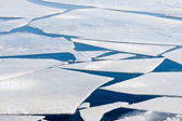 Frozen sea with big ice floes — Foto Stock