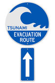 Tsunami Evacuation Route — Stock Vector