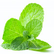 Mint leaf close up on a white — Stock Photo #10557525