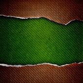 Riss zelle papier auf grunge grün hintergrund — Stockfoto