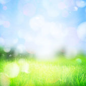 Spring abstract nature background — Stock Photo