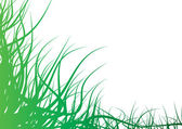 Abstract grass — Stock Photo