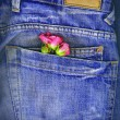 A couple of roses tucked in a denim pocket. Conceptual image for love - Stock Photo