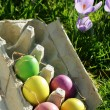 Easter eggs — Stock Photo #8099841
