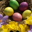 easter eggs — Stock Photo #8099842