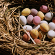 Easter eggs — Stock Photo #8099843