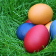 Easter eggs hidden in the grass — Stock Photo #8099856