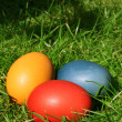 Easter eggs hidden in the grass — Stock Photo #8099863