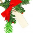Christmas border with white empty tag isolated on white background — Stock Photo