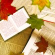 Stock Photo: Background made from opened books and maple leaves
