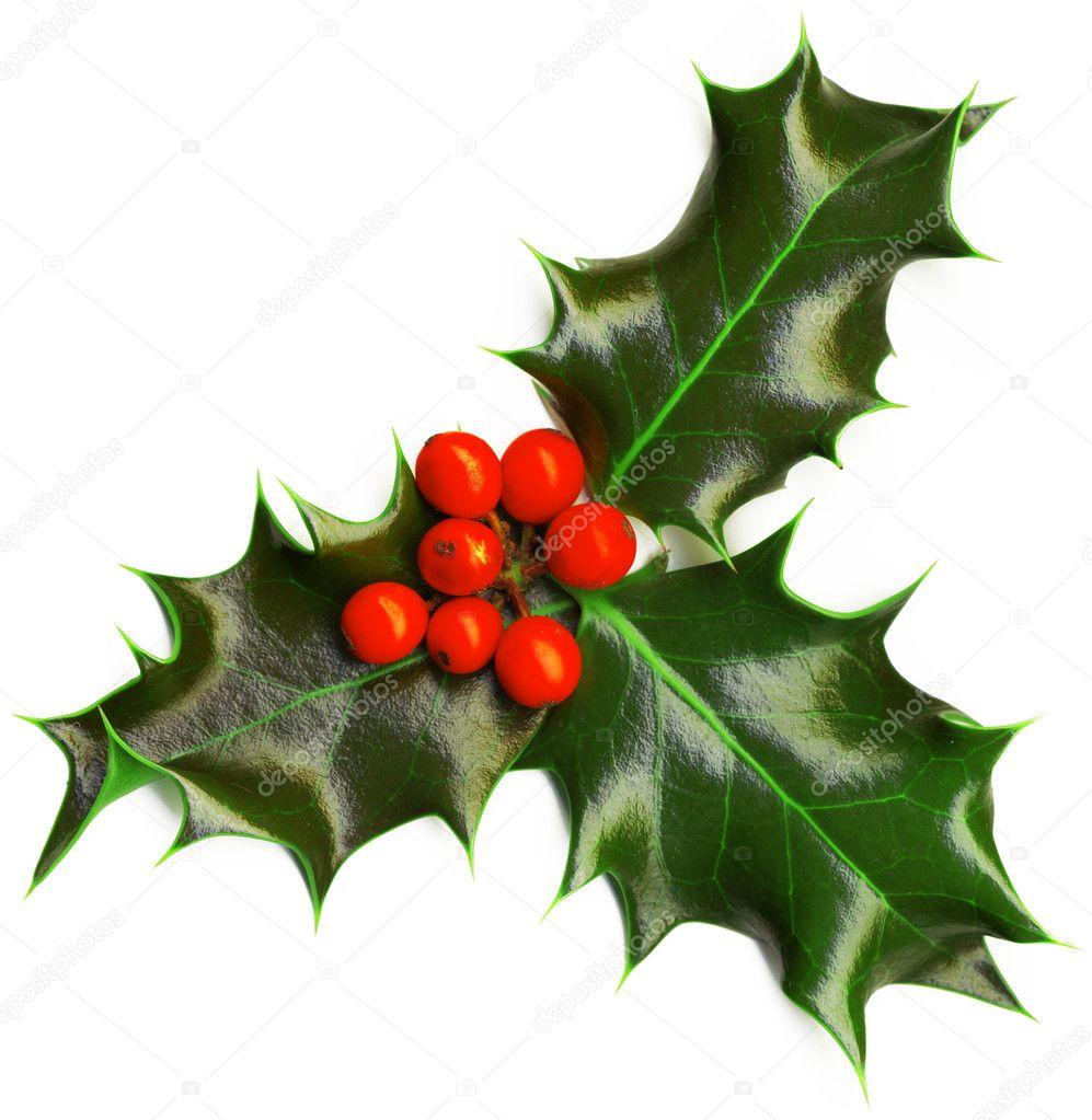 Christmas decoration stock photo alisafoytik 8100561 for Decoration photo