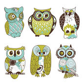 Collection of six different owls — Stok fotoğraf