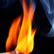 Burning matchstick — Stock Photo #8514155