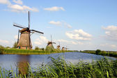 Dutch windmills — Stock Photo