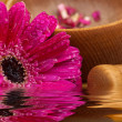 Flower gerber daisy and mortar wood, composition zen, close up — Stock Photo #8888403
