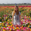 Royalty-Free Stock Photo: Pretty blond girl in a field of flowers