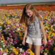 Girl looking at flowers in a large flower field. — Stock Photo