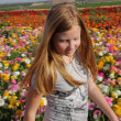 Small Blonde Girl at the colored flowers — Stock Photo