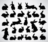 Rabbit silhouettes — Stock Vector