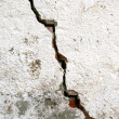 The crack — Stock Photo