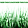 Abstract grass texture - Photo
