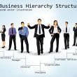 Business Hierarchy Structure — Stock Vector #8348536