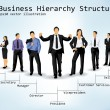 Stock Vector: Business Hierarchy Structure