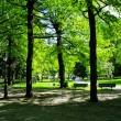 Stock Photo: City Park in Stockholm, Sweden