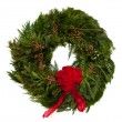 Wreath — Stock Photo #8007707
