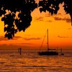 Парусник на закате — Стоковое фото